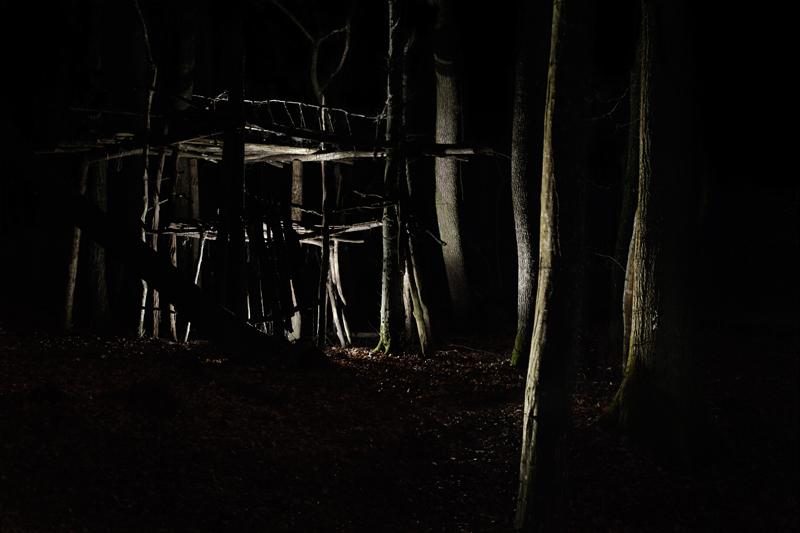 Nicolas-Henri_Magic-Forest_Galerie-Wertheimer