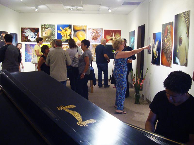 2014-FOTOSEPTIEMBRE-USA_Musical-Bridges-Art-Gallery_013