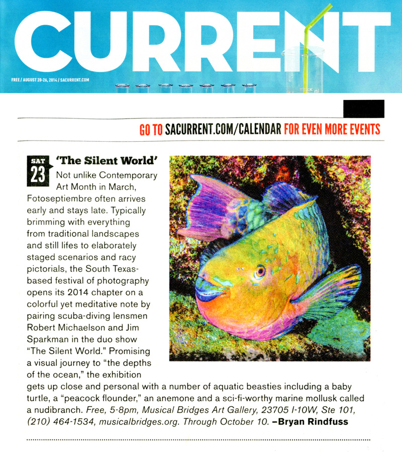2014-FOTOSEPTIEMBRE-USA_The-Silent-World-Exhibit_Musical-Bridges-Art-Gallery_San-Antonio-Current