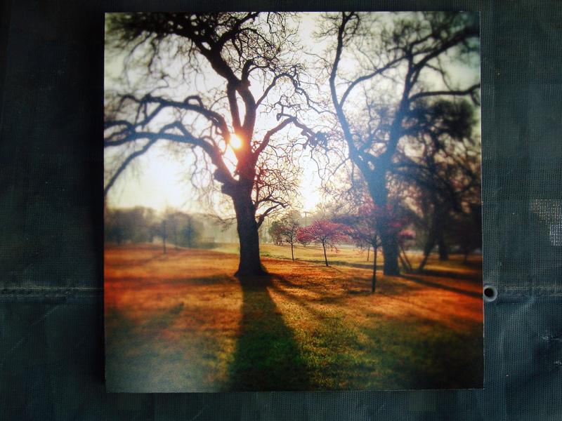 2014-FOTOSEPTIEMBRE-USA_San-Antonio-College-Eco-Centro_010