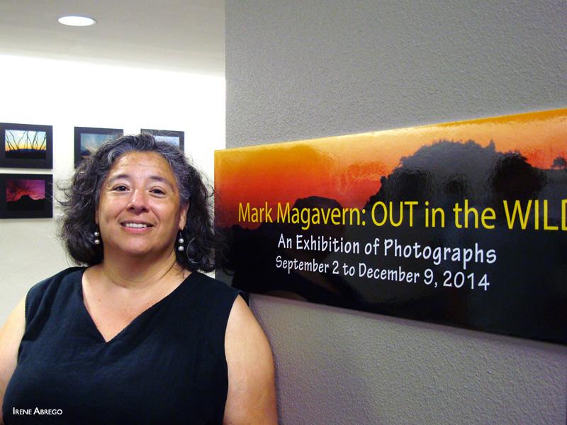 2014-FOTOSEPTIEMBRE-USA_San-Antonio-College-Library_002