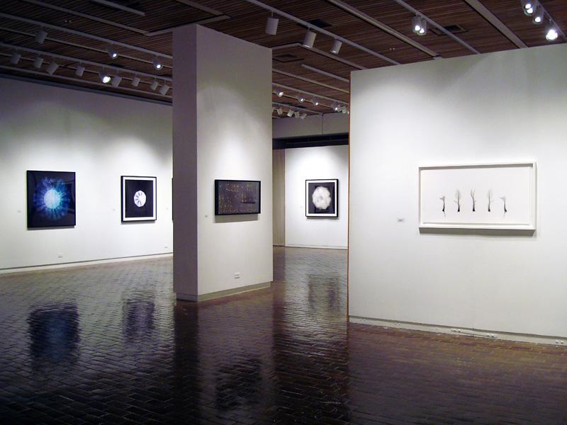 2014-FOTOSEPTIEMBRE-USA_UTSA-Art-Gallery_010