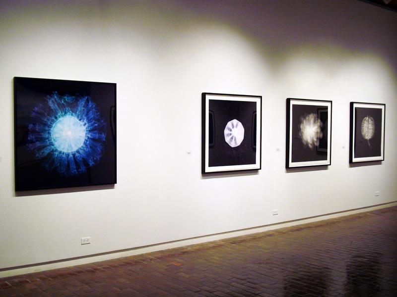 2014-FOTOSEPTIEMBRE-USA_UTSA-Art-Gallery_015