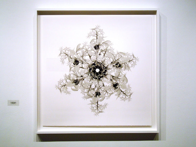 2014-FOTOSEPTIEMBRE-USA_UTSA-Art-Gallery_019