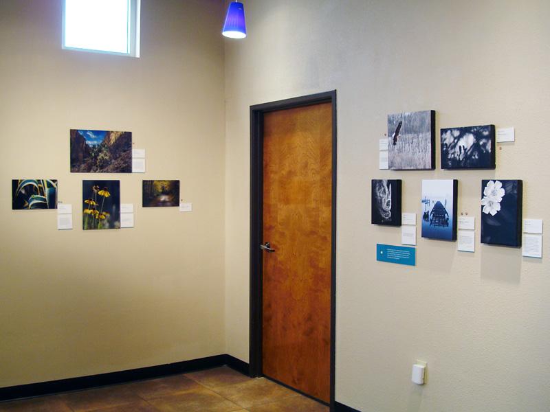 2015-FOTOSEPTIEMBRE-USA_Digital-Pro-Lab_021