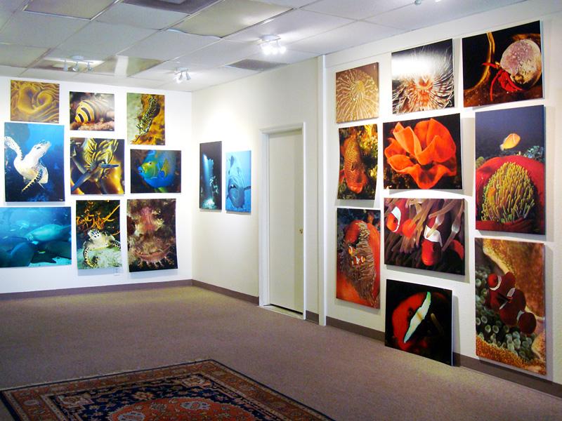 2015-FOTOSEPTIEMBRE-USA_Musical-Bridges-Art-Gallery_010