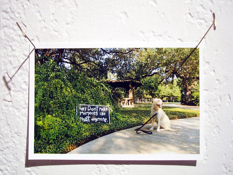2015-FOTOSEPTIEMBRE-USA_R-Gallery_015