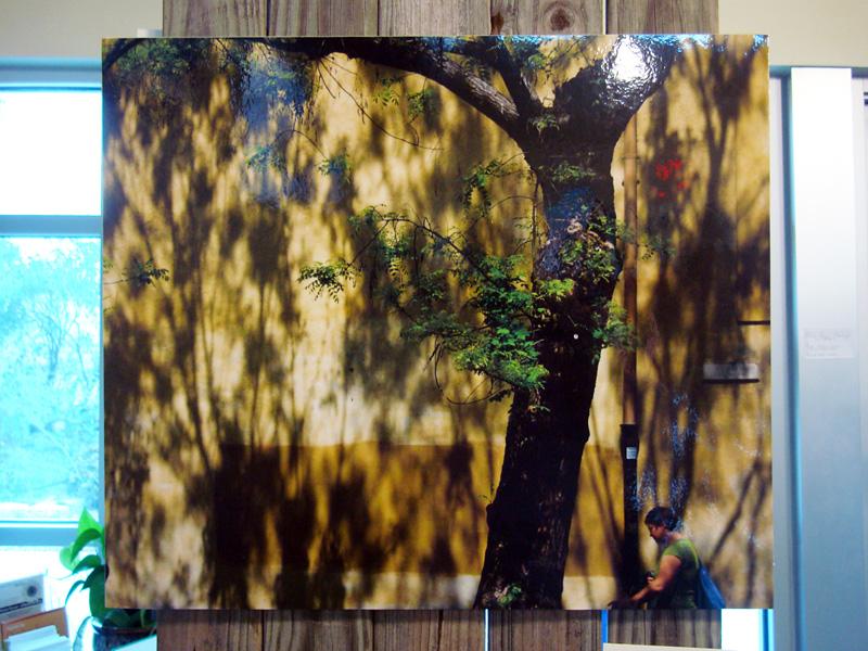 2015-FOTOSEPTIEMBRE-USA_SAC-EcoCentro_014