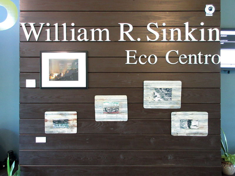 2016-fotoseptiembre-usa_san-antonio-college-william-r-sinkin-ecocentro_010