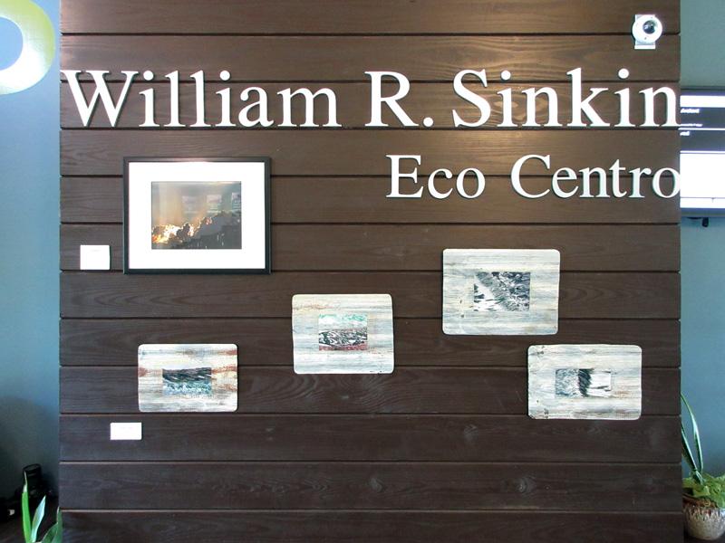 2016-fotoseptiembre-usa_san-antonio-college-william-r-sinkin-ecocentro_010