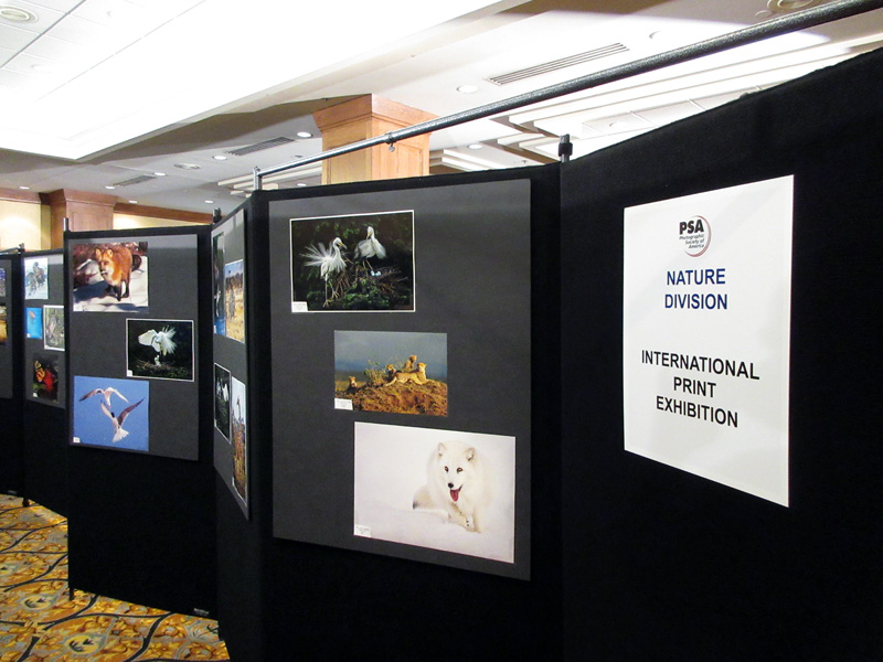 2016-fotoseptiembre-usa_photographic-society-of-america-international-print-exhibition_014